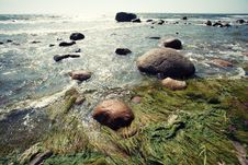Free Sea With Sun, Rocks And Algae Royalty Free Stock Images - 20794539