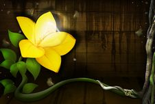 Free Yellow Flower With A Light Bulb Stock Image - 20794851