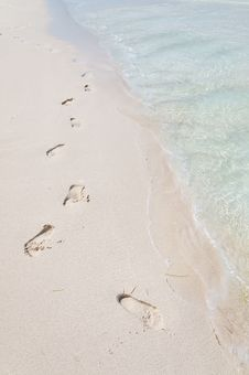 Free Footprints On A Tropical Beach Stock Photo - 20797590