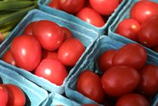 Free Fresh Tomatoes Stock Photography - 2080812