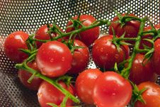 Free Tomatoes Royalty Free Stock Images - 2082809