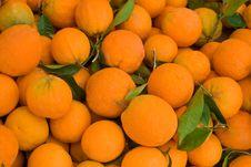 Free Orange Stock Images - 2084884