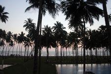 Free Silhouette Of Coconut Tree Stock Photo - 2086780