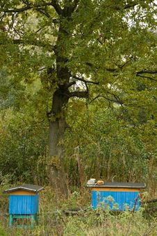 Free Beehives Stock Images - 2088464