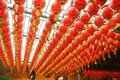 Free Red Chinese Lanterns Stock Photo - 20800150