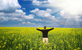 Free Man In Meadow. Royalty Free Stock Photo - 20804355