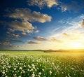Free Green Meadow In Mountain. Stock Photo - 20804430
