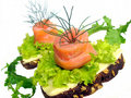 Free Sandwich With Salmon Royalty Free Stock Photos - 20808778