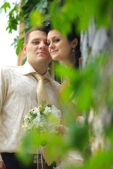 Free Newlywed Couple Stock Photos - 20800573