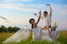 Wedding Dinner On The Field Stock Image