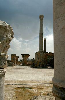 Free Cartagina In Tunisia Royalty Free Stock Photo - 20800855