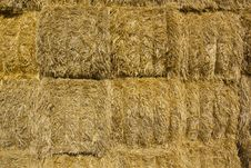 Free Straw Bales Royalty Free Stock Image - 20802226