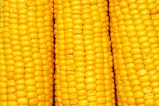 Free Corn Background Pattern Royalty Free Stock Photos - 20802708