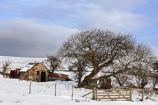 Free Winter On The Welsh Hills Stock Photo - 20803400