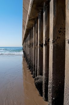 Shell Encrusted Pillars Of A Pier Stock Image