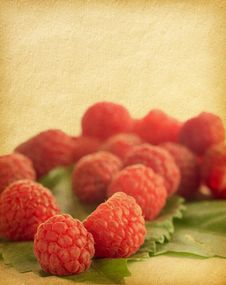 Free Raspberries Royalty Free Stock Photos - 20803628