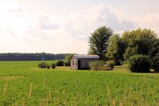 Free Farmland Royalty Free Stock Images - 20803909