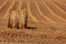 Free Hay Bale On Cropped Field Stock Images - 20804204
