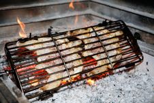 Free Grilled Chicken Royalty Free Stock Images - 20806419