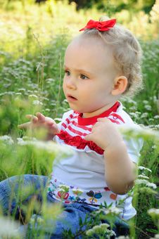 Free Baby With Red Bow On The Meadow Stock Image - 20806651