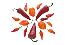 Free Group Of Various Hot Chili Peppers Royalty Free Stock Photography - 20806787