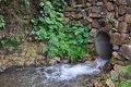 Free Rural Streams Royalty Free Stock Photo - 20811365