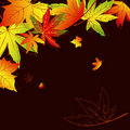 Free Abstract Autumn Leaves Background Stock Images - 20817374