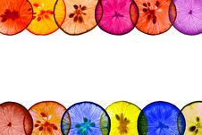 Free Colorful Lemon Pieces Whit White Space Stock Photography - 20810072