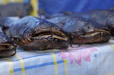 Free Smoked Fish Royalty Free Stock Photography - 20811097