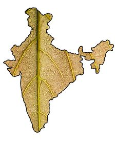 Green India With Clipping Mask Royalty Free Stock Photo