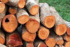 Free Firewood Stock Photos - 20812683