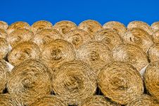 Free Dry Straw Texture Stock Image - 20813021