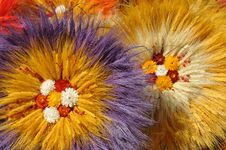 Free Dried Flowers Stock Images - 20813634