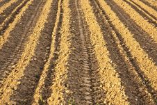 Background Of Newly Plowed Field Royalty Free Stock Photography