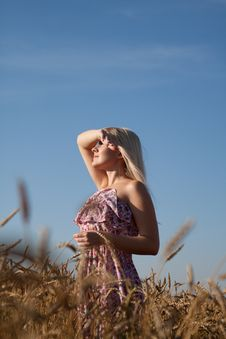 The Beautiful Girl In The Field With Wheat Royalty Free Stock Images