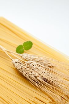 Free Ingredients Of A Meal Of Spaghetti Stock Image - 20819431