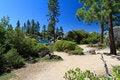 Free Lake Tahoe Stock Photography - 20821932