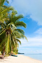 Free Tropical Beach At Seychelles Royalty Free Stock Photography - 20827427