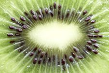 Free Kiwi Fruit Background Stock Image - 20823421