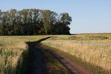 Free Rural Road Stock Image - 20826731
