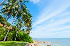 Beautiful House With Palm Trees On The Beach Stock Image
