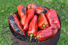 Free Grilled Red Peppers Stock Photo - 20828770