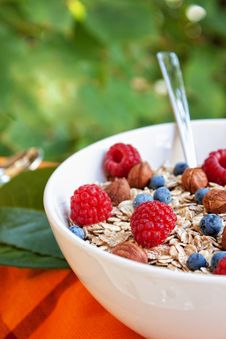 Free Oat Nuts Breackfast Royalty Free Stock Images - 20829819