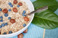 Free Oat Nuts With Blueberries Stock Image - 20829871