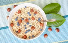 Free Oat Nuts With Blueberries Stock Images - 20829874