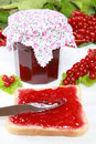 Free Red Currant Jam Royalty Free Stock Image - 20834346
