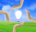 Free Women Hand With Light Bulb Royalty Free Stock Photography - 20837087
