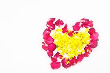 Free Pink Rose Pital Royalty Free Stock Images - 20834299