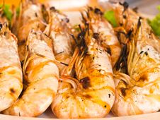 Free Grilled Prawns Royalty Free Stock Images - 20838199