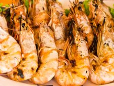 Free Grilled Prawns Stock Images - 20838214